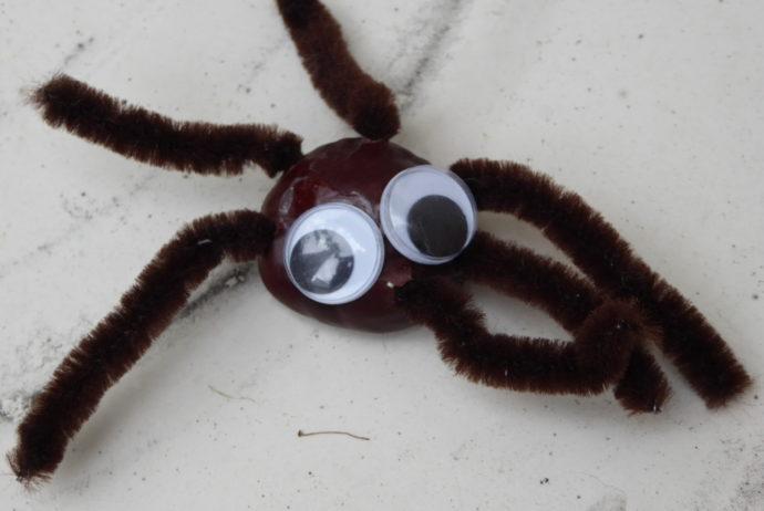 Spinne aus Kastanie