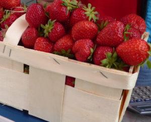 Erfolg beim Erdbeerpflücken
