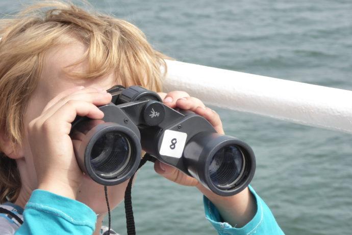 Fahrt zu den Seehundbänken