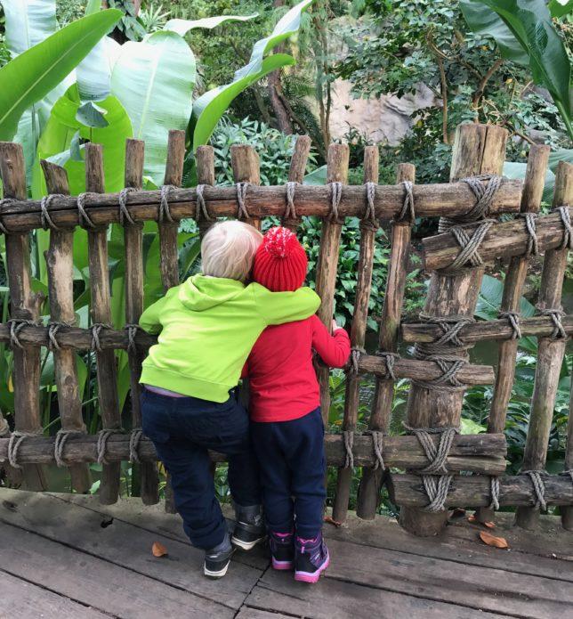 mit Kindern in Leipzig Zoo