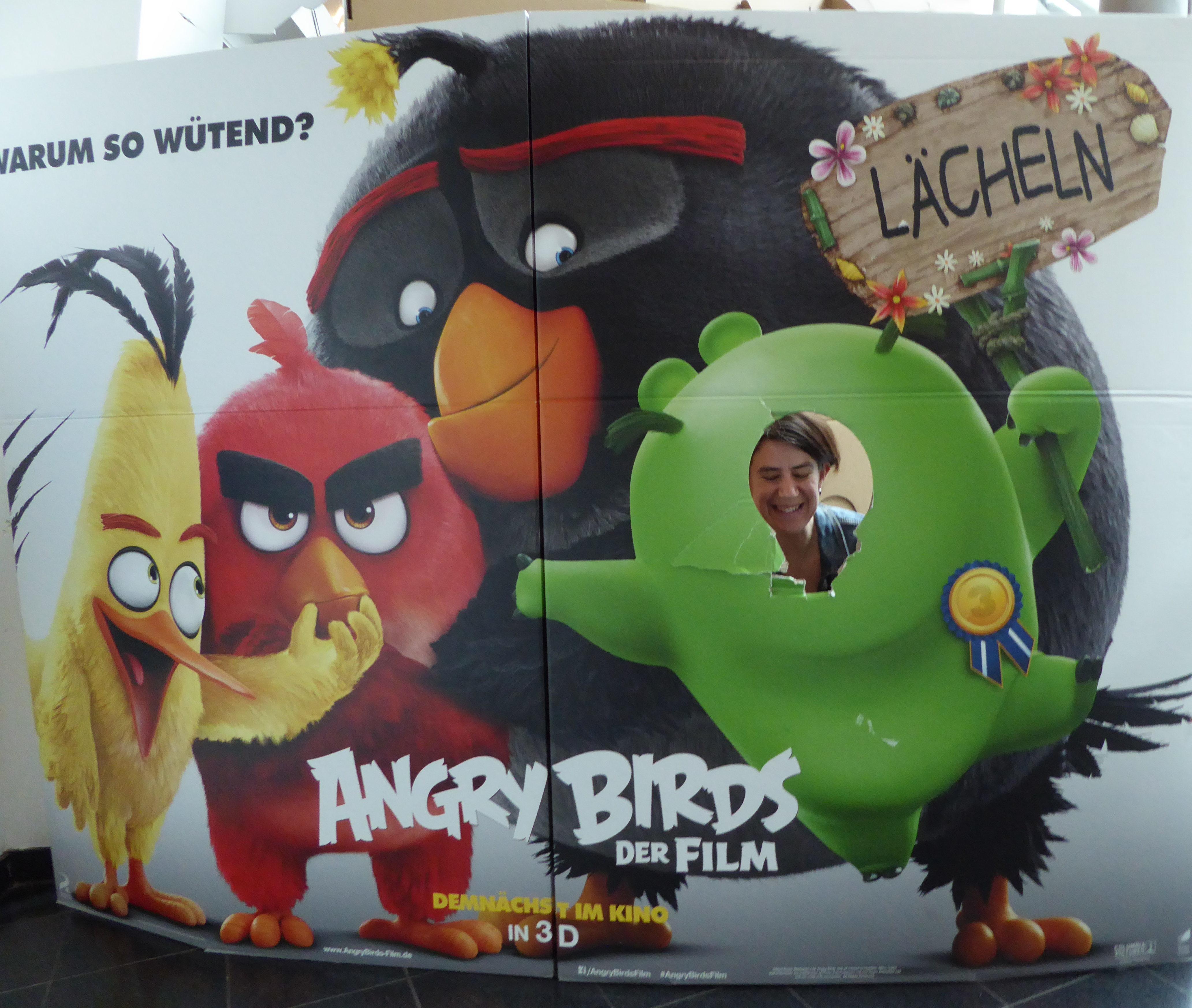 Vogelkunde für Großstadtkinder – zwischen Meisenkasten und Angry Birds