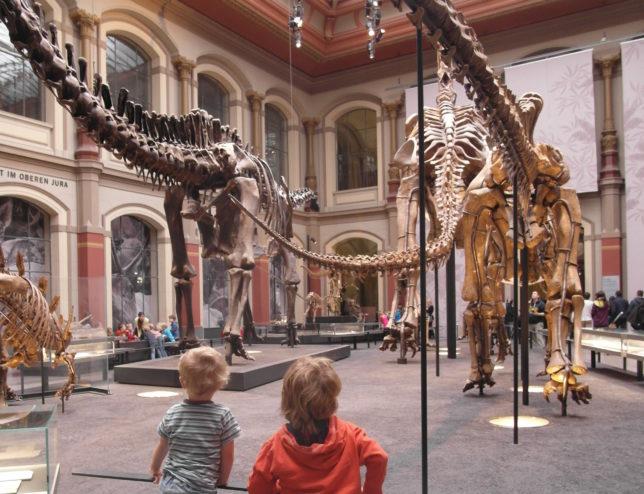 Dinosauriersaal Museum