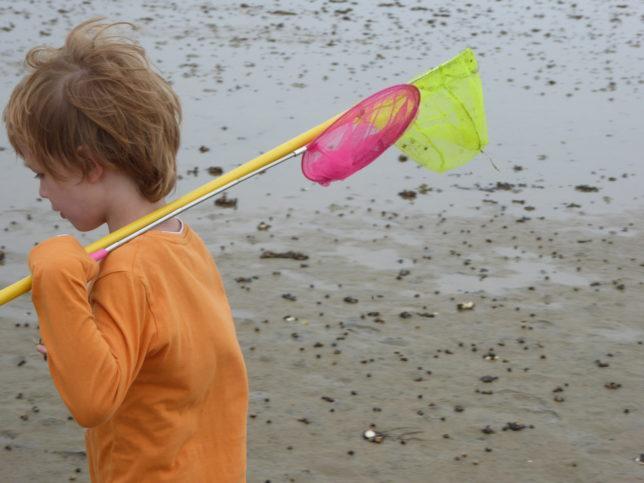 Fischernetz statt Handynetz: Wattwanderung | Nordsee mit Kindern | Jugendherberge Sylt