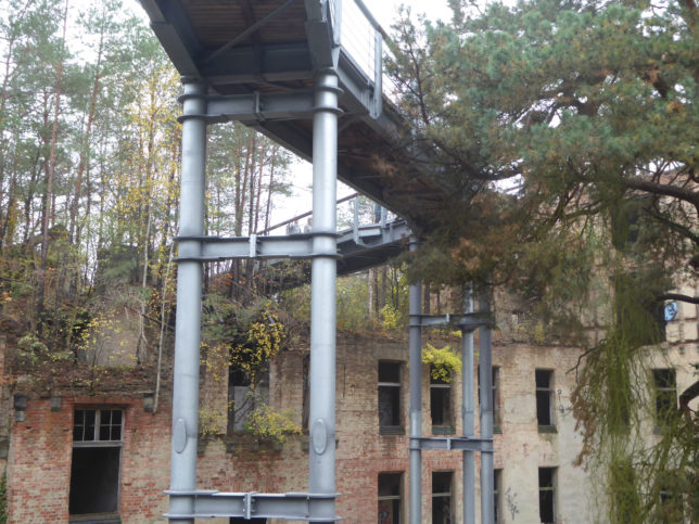 Ruinen Beelitz-Heilstätten | Zeitreise auf dem Baumkronenpfad