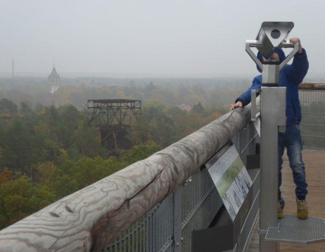 Aussicht über Wald und Nebelmeer | Baumkronenpfad | Brandenburg mit Kindern