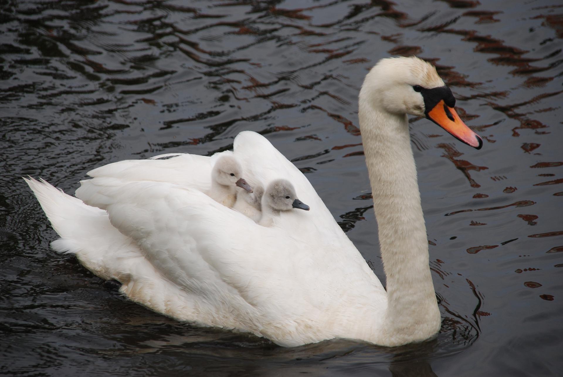 5 Dinge, die ich als Mutter gut mache
