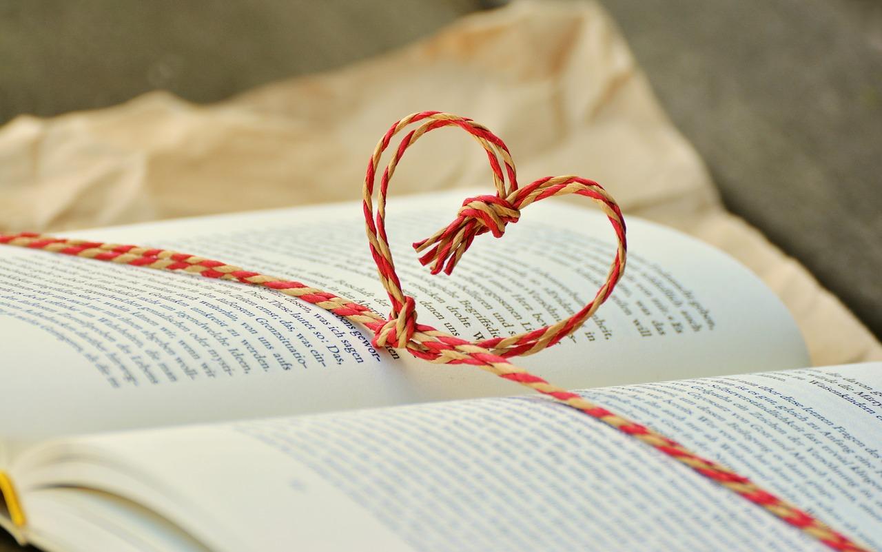 Lesen lieben lernen