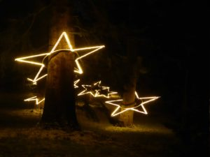 Sterne Christmas Garden