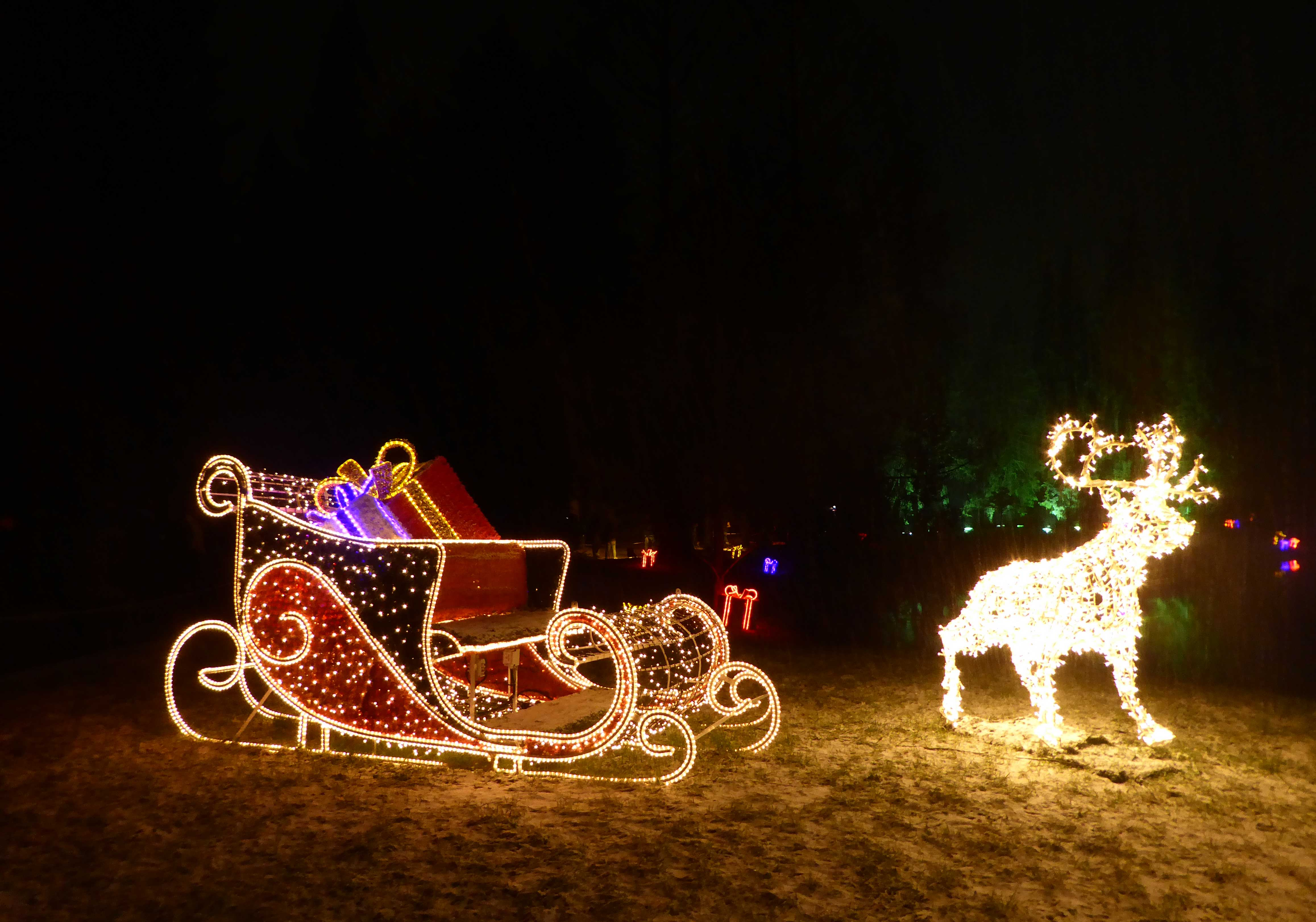 Christmas Garden Berlin: Ausflug zum Lichterspiel